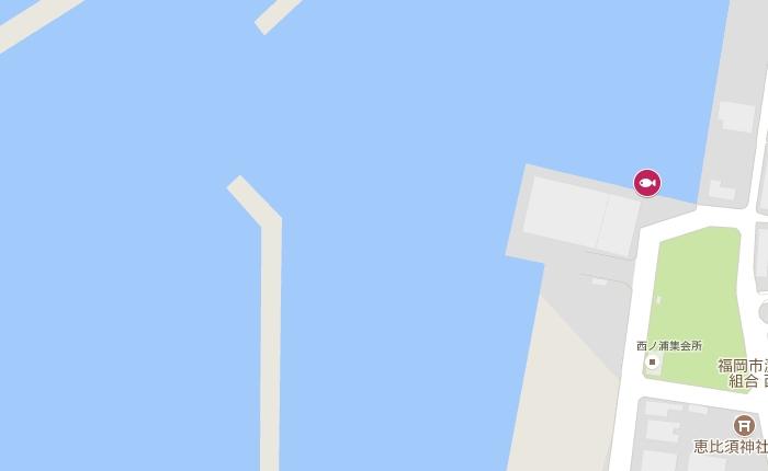 アジ13cm/糸島の西の浦漁港、製氷工場付近