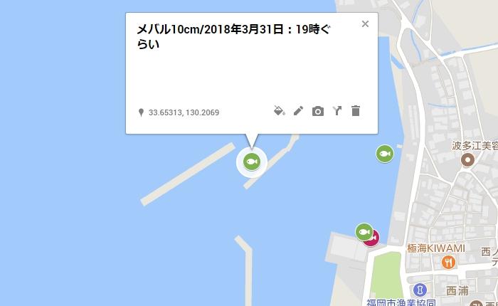 メバル10cm/糸島の西の浦漁港、外側の防波堤の中波止前付近