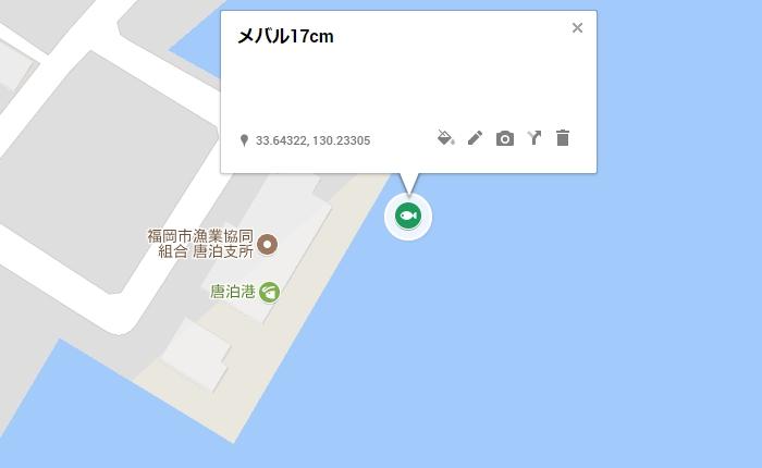 メバル17cm/糸島の唐泊漁港、組合建物付近
